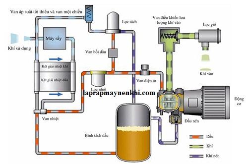 Vai trò các bộ phận máy nén khí trục vít có thể bạn chưa biết?
